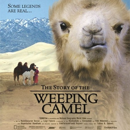 Dorfkino Riehen - Story of the weeping Camel